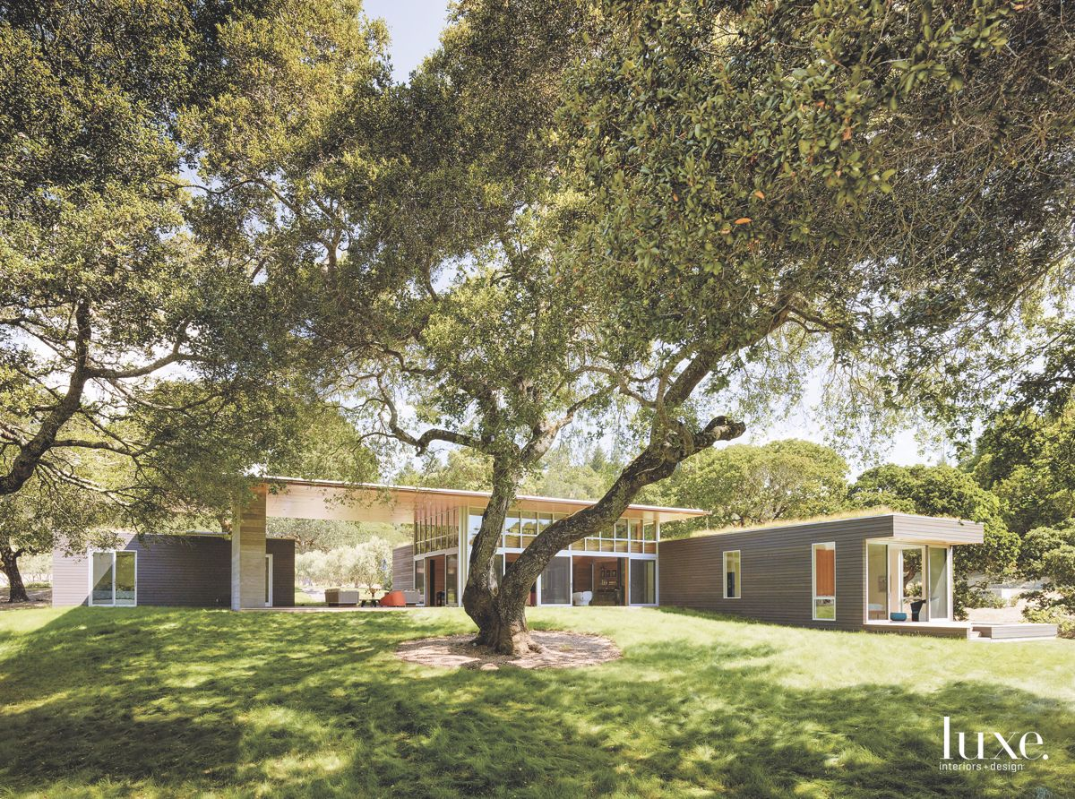 Green Roof on Modernist Sonoma Home