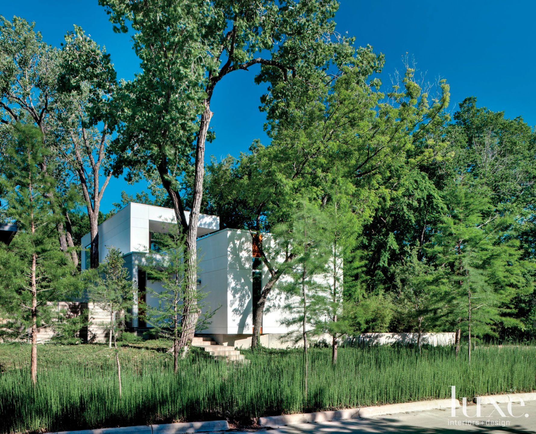Modern White Exterior Landscape