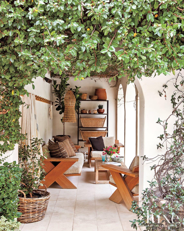 Mediterranean Vine-Covered Terrace