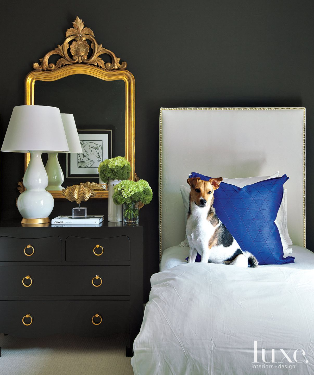 Black High-Contrast French-Revival Guest Room
