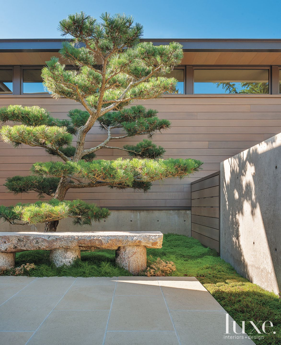 Contemporary Neutral Outdoor Seating with Japanese Pines