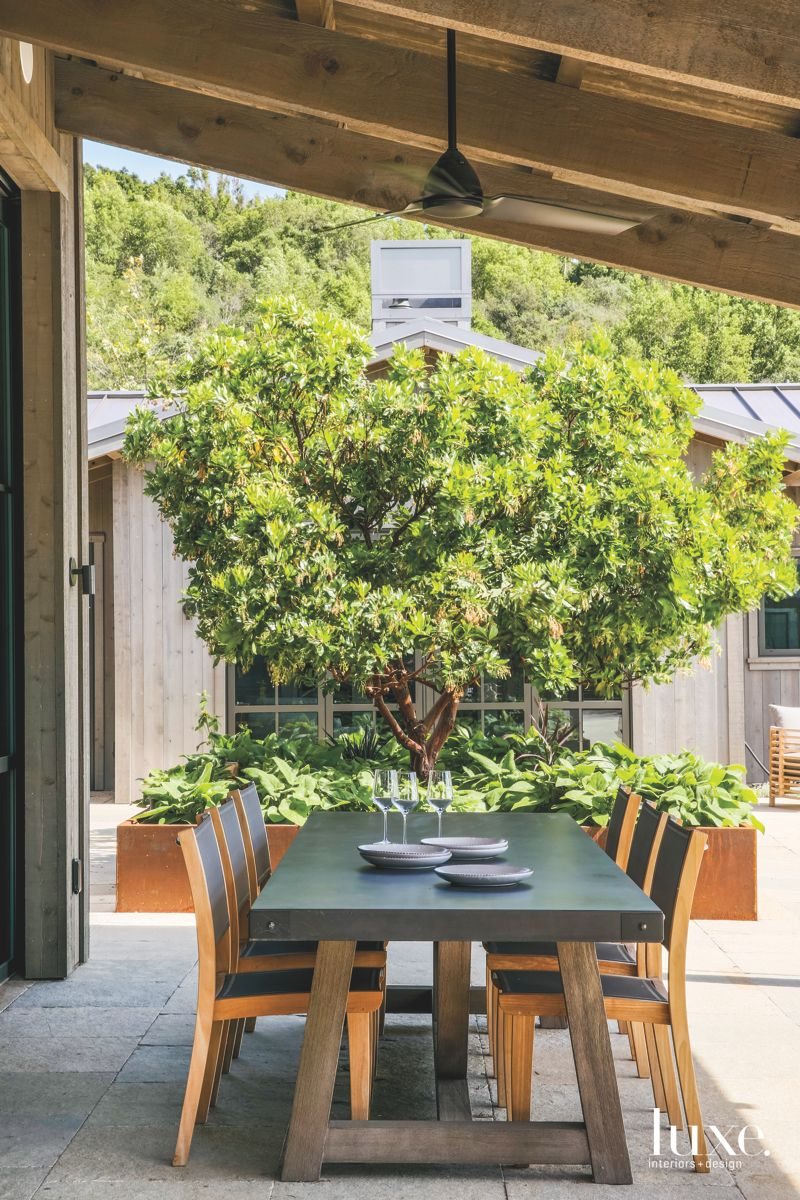 Outdoor Dining Room with Tree and Outdoor Furniture