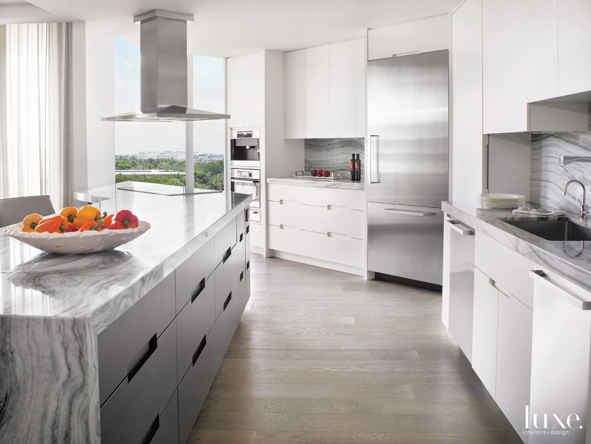 Modern White Kitchen with Zebra Quartzite Countertops