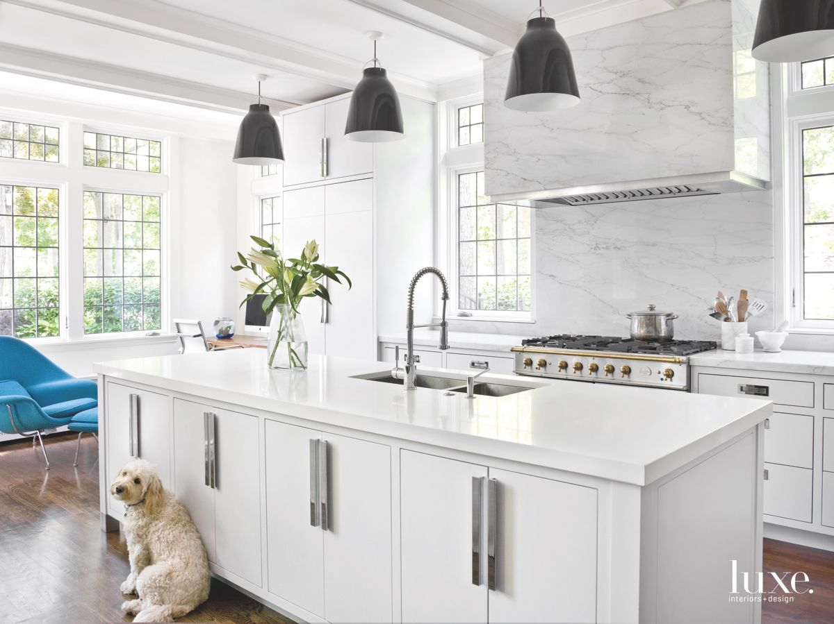 Renovated Modern White Kitchen with Dog