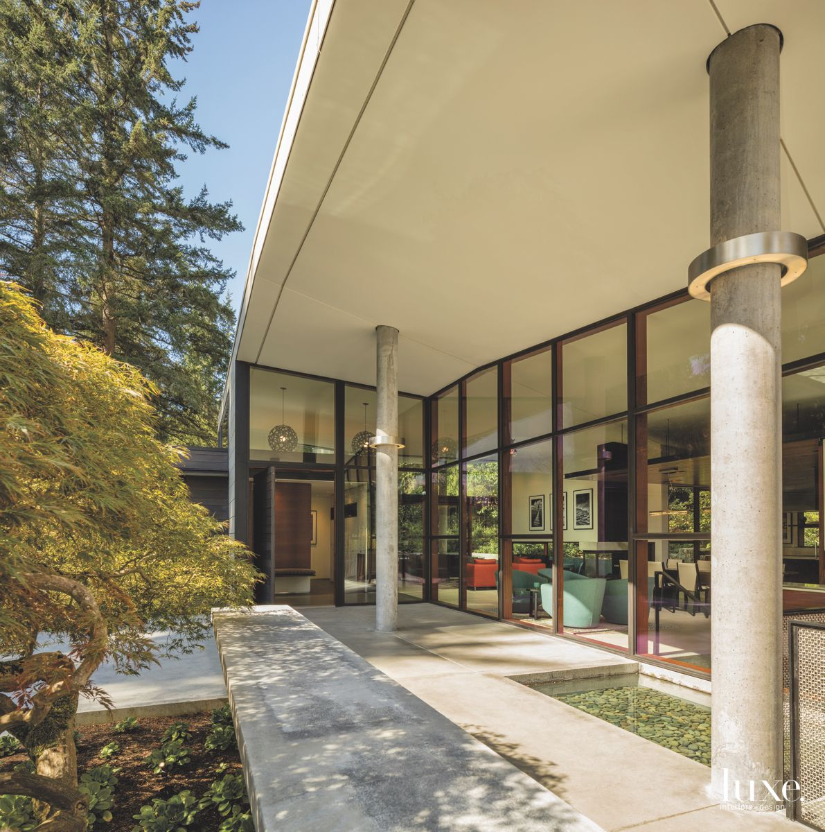 Contemporary Courtyard View with Tree Landscaping and Interior View
