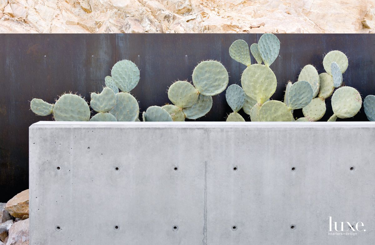 Modern Gray Exterior Detail with Wheel Cactus