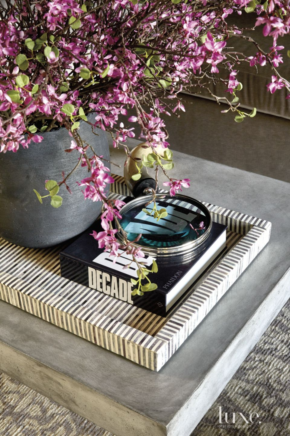 Transitional Coffee Table Detail with Striped Tray