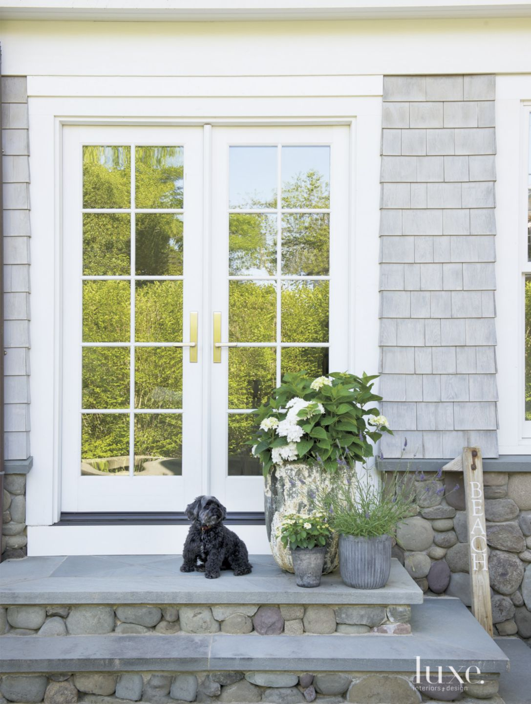 Contemporary Gray Exterior with Black Dog