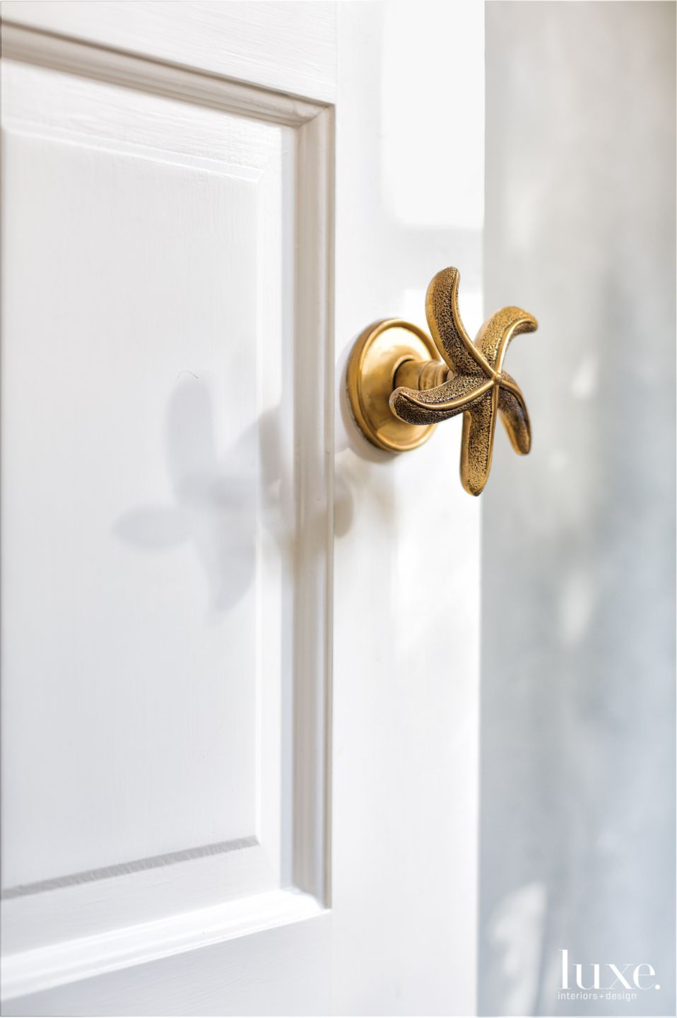 Contemporary White Bathroom Door with Brass Starfish Handle