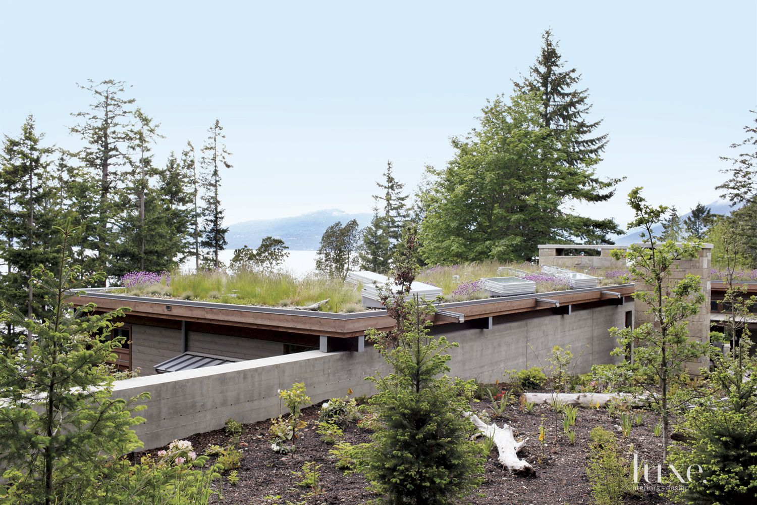 Neutral Mountain Flat Roof Garden