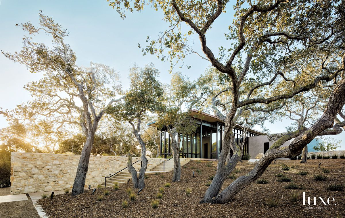 Contemporary Neutral Exterior with Olive Trees