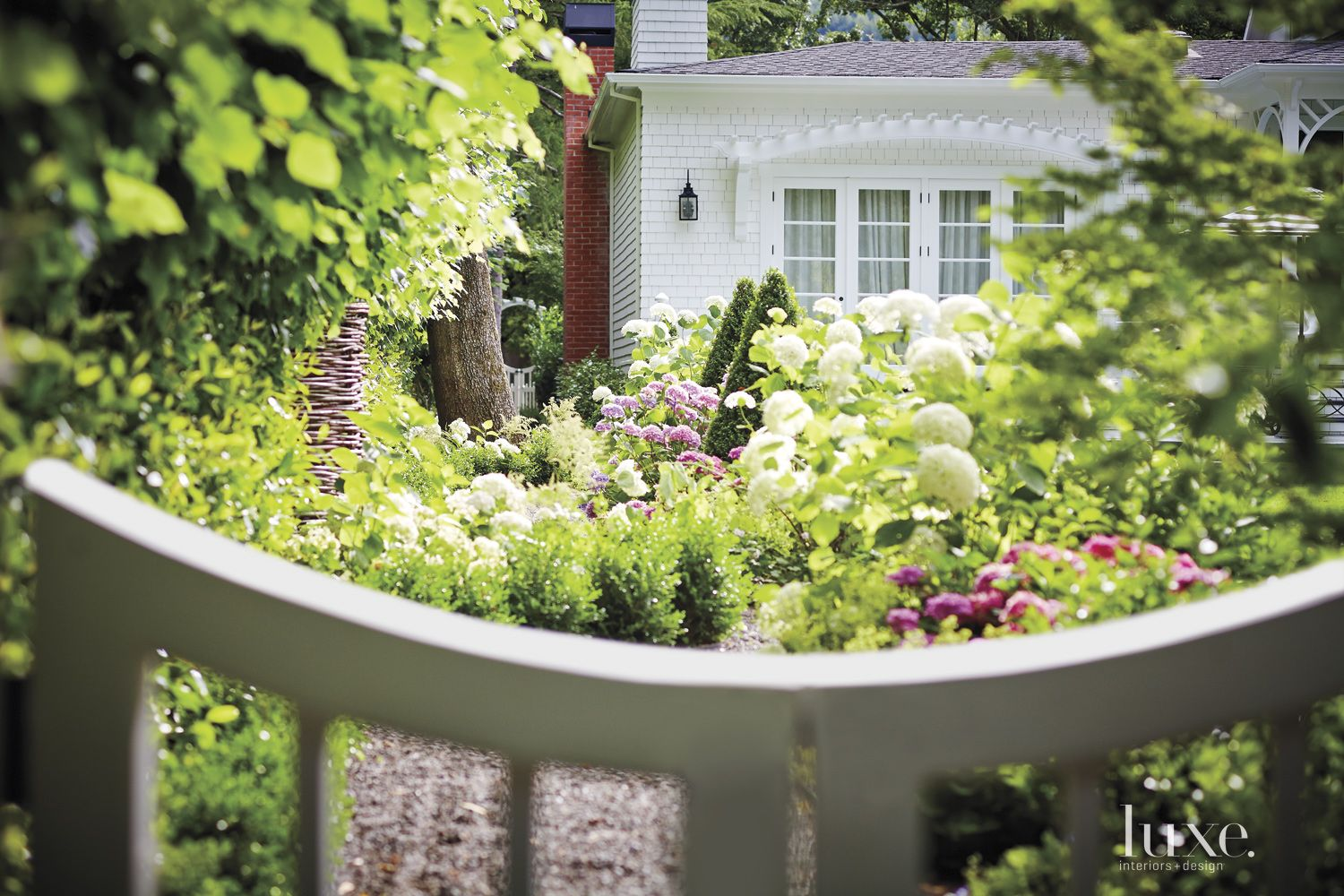 Lush Backyard Landscape Plantings