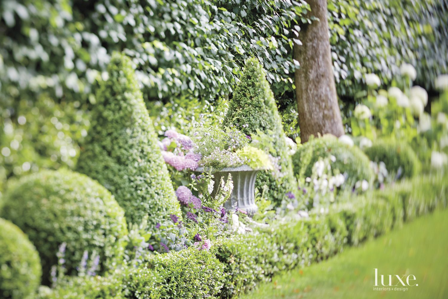 Lush Backyard Topiary Landscape