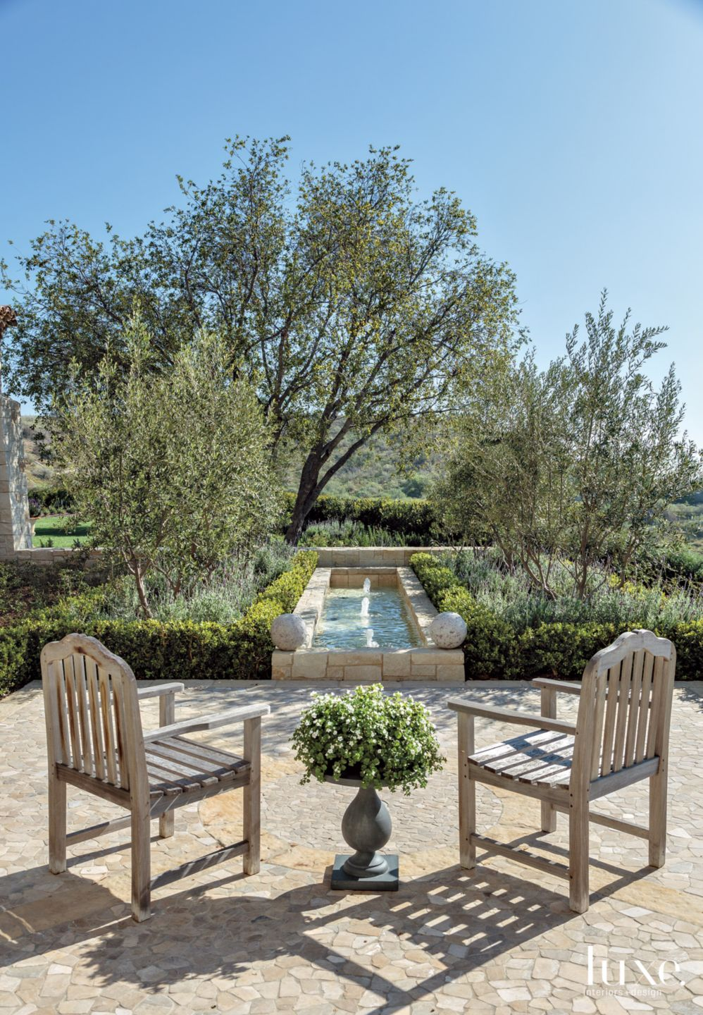 Traditional Neutral Courtyard Fountain with Oilve Trees
