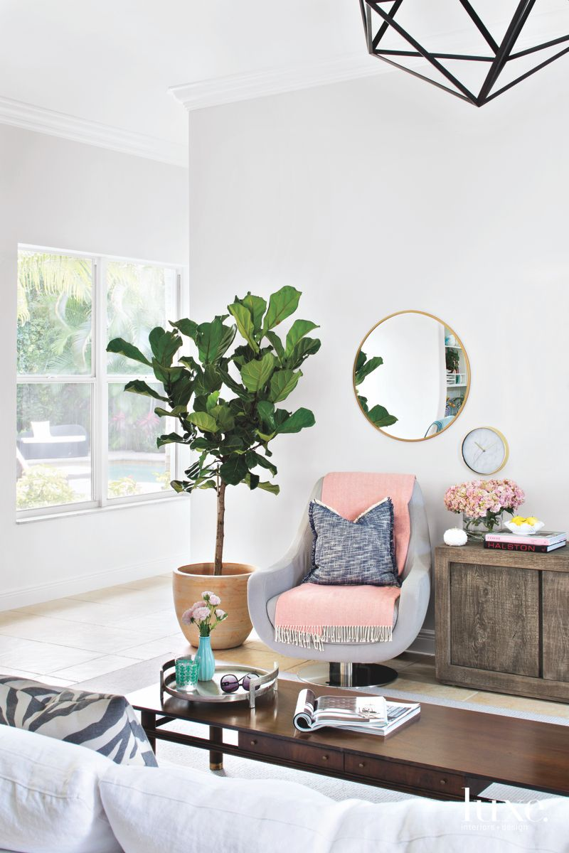 Coffee Table Family Room with Plant and Mirror