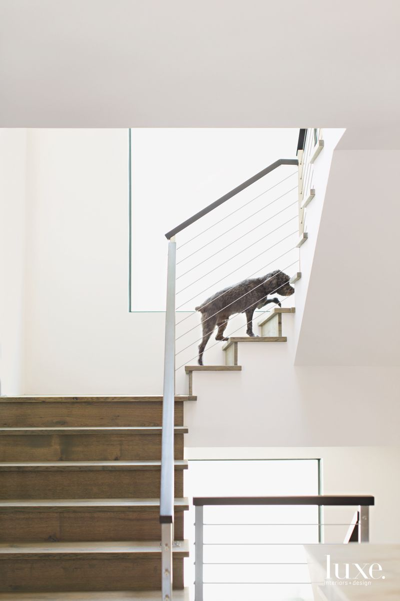 Steel Stair Frame with Dog