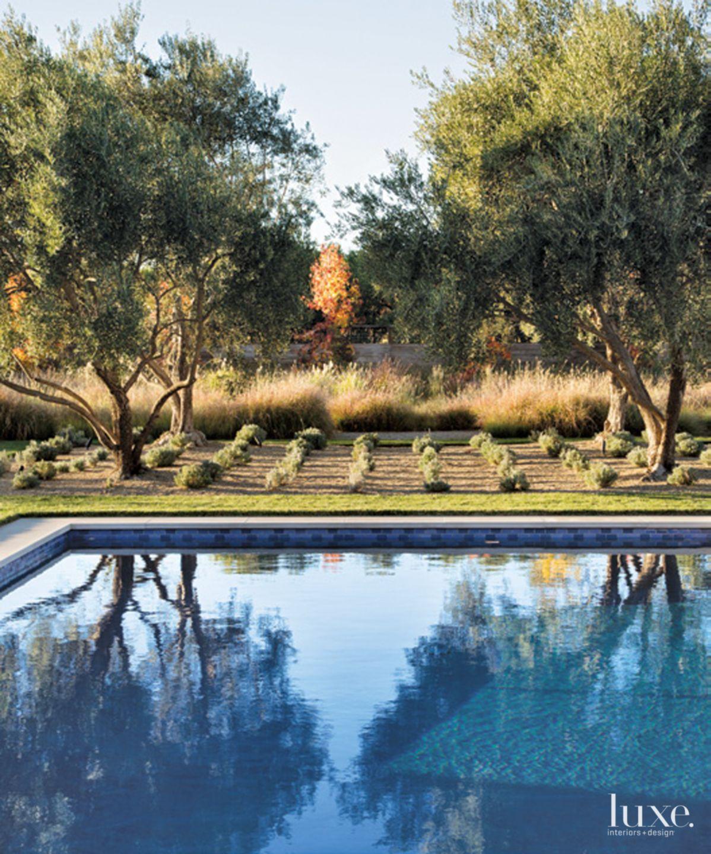 Contemporary Backyard Poolside Landscape
