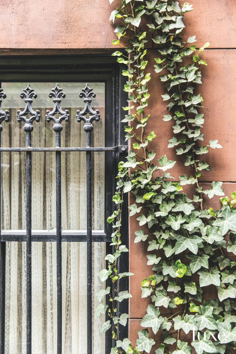 Creeping Ivy Exterior with Wrought Iron Window Bars